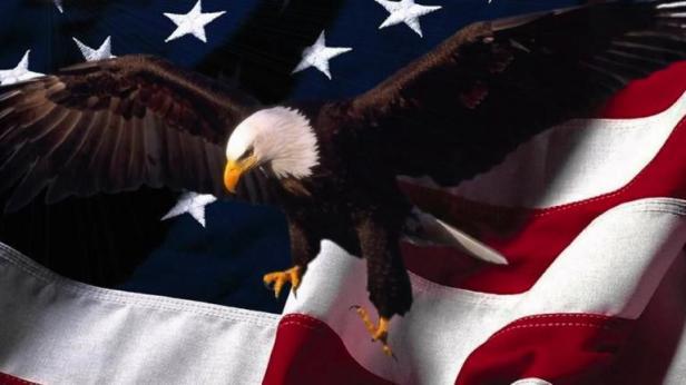 crop-patriotic-eagle-american-flag-background__large